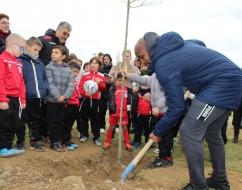 40 arbres plantés à Marsillargues